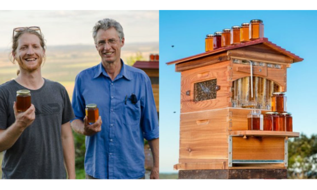 Father-Son Duo Help Create 51,000 New Beehive Colonies With Amazing Invention — Honey On Tap From The Hive