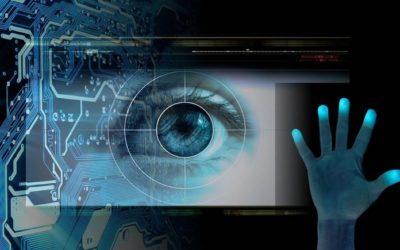 "U.S. Customs Continues to ""Modernize"" Its System to Include Biometrics For All Passengers"