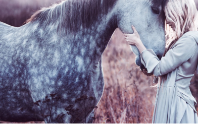 Study Shows That Horses Understand Our Emotions & Remember Us Deeply