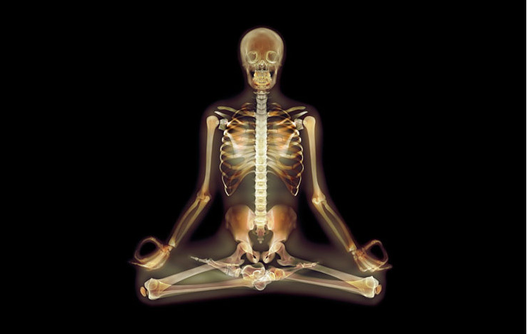 THE SCIENCE BEHIND YOGA AND STRESS
