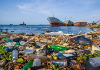 Promising Study Suggests that Magnetic Nano Coils Can Decompose Ocean Microplastics