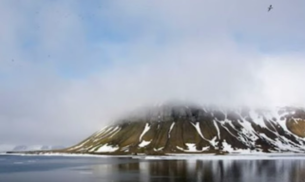 Five New Islands Discovered In Russian Arctic