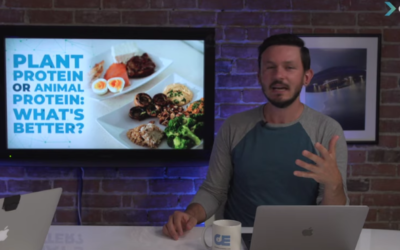 Plant Protein Or Animal Protein: What's Better? [VIDEO]