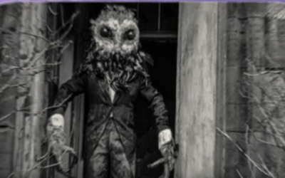 Cryptid Paranormal and UFO News. Owlman and the Tr3B [VIDEO]