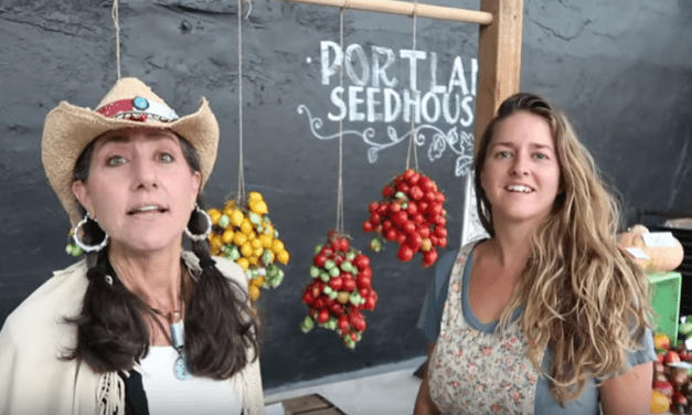 SEED SAVING wet and dry method and GARDENING SECRET! [VIDEO]