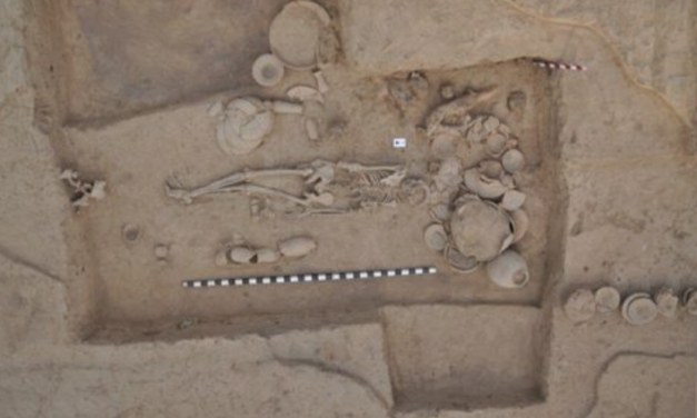 Largest-ever ancient-DNA study illuminates millennia of South and Central Asian prehistory, including Indus Valley Civilization