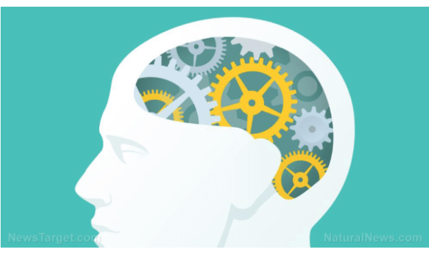 Nootropics: Not just a fancy way of saying brain vitamins