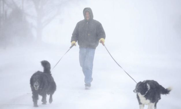 Old Farmer's Almanac Predicts 'Snow-verload' Winter Across Much of US