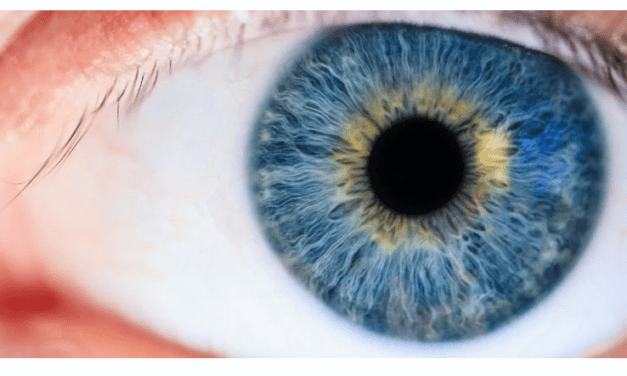 Staring Into Somebody's Eyes for 10 Minutes Can Alter Your State of Consciousness