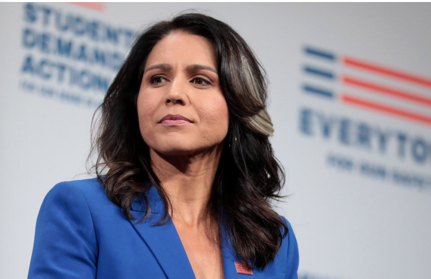 """Tulsi Gabbard Suggests Government Is Run By A """"Small Group Of Political Elite"""""""