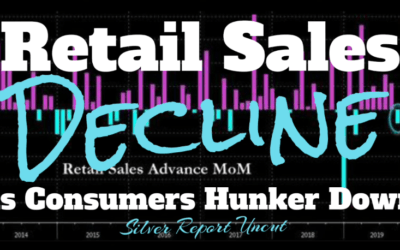 Economic Collapse News – Retail Sales Decline As Consumers Pause Their Spending, WeWork Bailout [VIDEO]