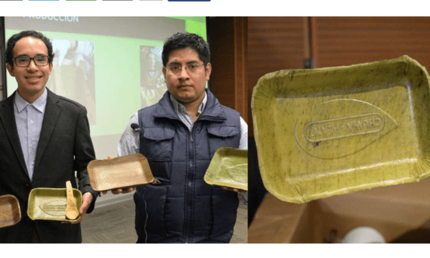 Compostable Plates Made From Banana Leaves Launched By Peruvian Group