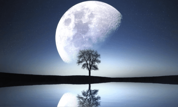 LUNAR CONSCIOUSNESS AND THE VALUE OF THE PRIMORDIAL DARKNESS