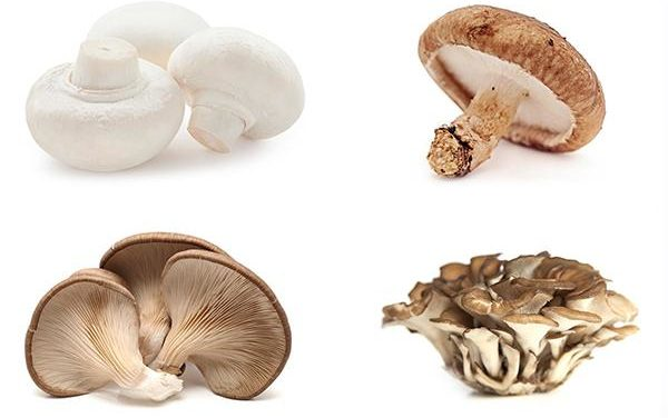 Study Suggests Eating Mushrooms Lowers Risk Of Prostate Cancer